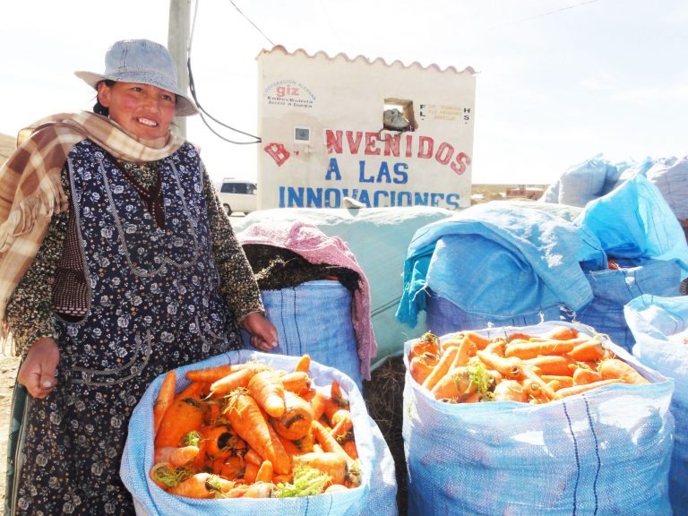 A Bolivian woman is standing behind two large sacks full of carrots